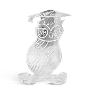 silver badge award wise owl